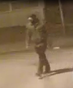 Queens Rob Pattern 102 Pct