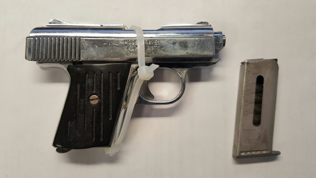 73 pct cell Phone Gun pic